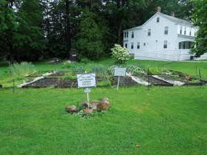 Parsons Garden - part of the Williams Sustainable Garden Project